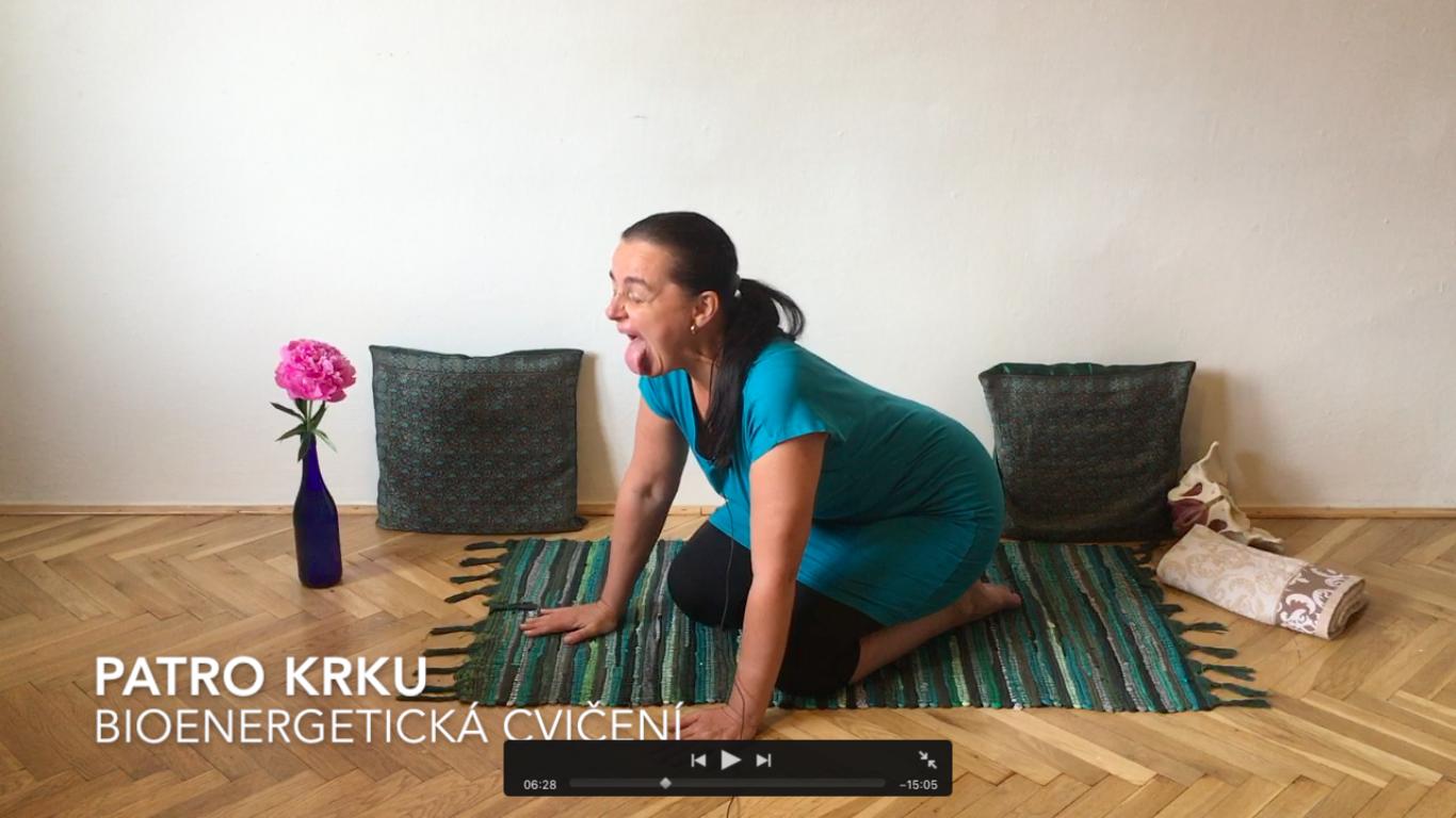 17. video - 21 MINUT Bioenergetická cvičení patra krku